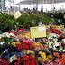 Esta acontecendo feira de Flores de Holambra em Parnaíba- PI