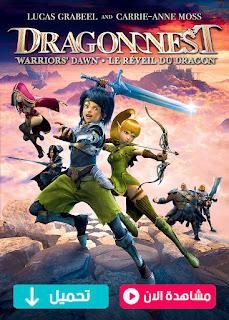 مشاهدة وتحميل فيلم Dragon Nest: Warriors' Dawn 2014 مترجم عربي