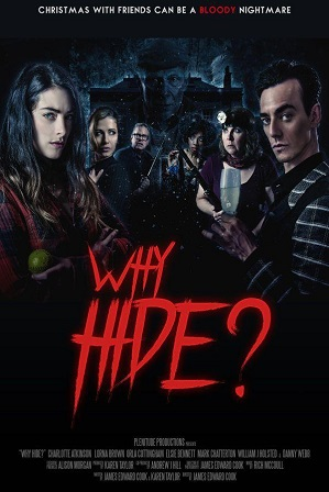 Why Hide? (2018) Full Hindi Dual Audio Movie Download 480p 720p WebRip