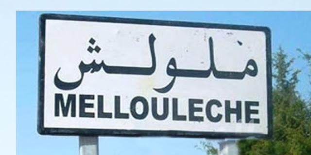 إعداد مشروع لحماية مدينة ملولش من الفيضانات بكلفة 2.5 مليون دينار