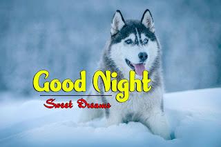 Latest Beautiful Good Night Wallpaper Free Download %2B36