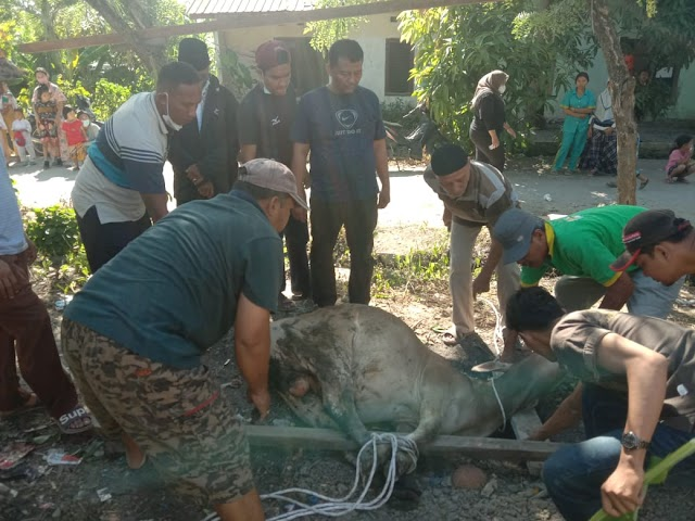 PRM Tangkahan Sembelih 11 Ekor Hewan Kurban