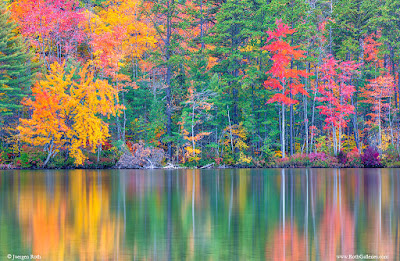 https://juergenroth.photoshelter.com/gallery/New-England-Fall-Foliage/G00000Rcr4nbaQnw/