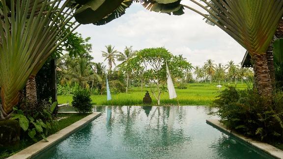hotel murah dengan infinity pool di ubud bali