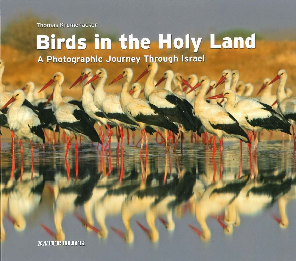 Birds in the Holy Land – book by Thomas Krumenacker