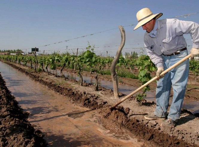 Piden a productores cargar su CBU en la web de Contingencias Climáticas para cobrar el Seguro Agrícola y el Fondo Compensador