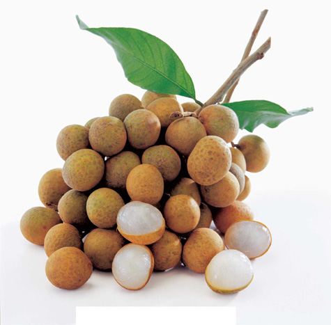 The Benefit of Longan Fruit - The World in Your Hand