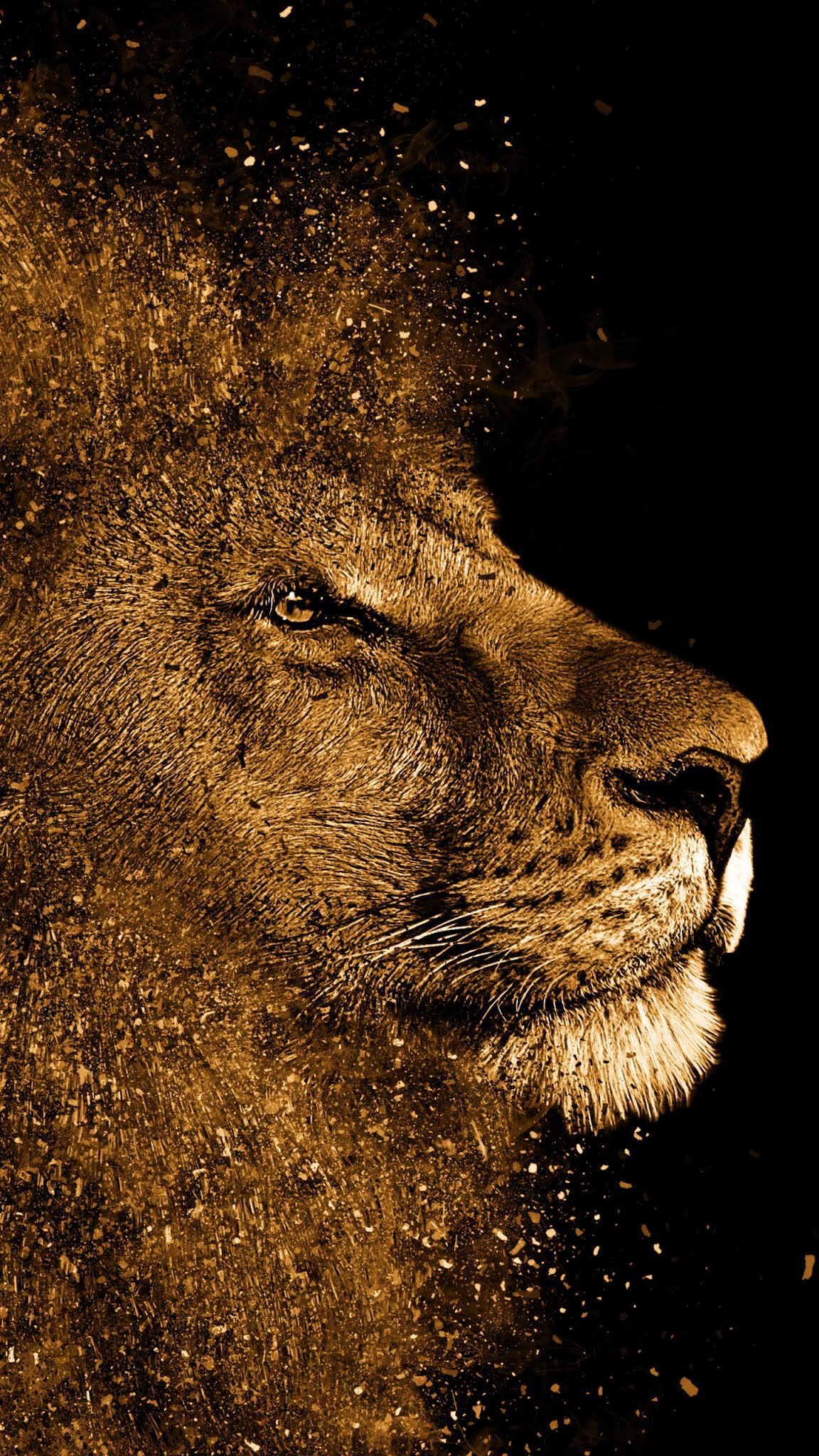 Lion painting art work