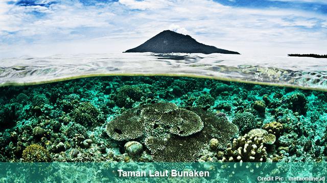 Rekomendasi Tempat Wisata Taman Laut di Indonesia