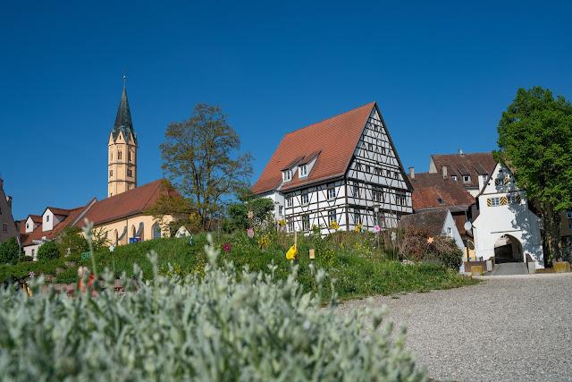 Premiumwanderweg DonAUwald | Etappe 3 von Gundelfingen nach Dillingen 16