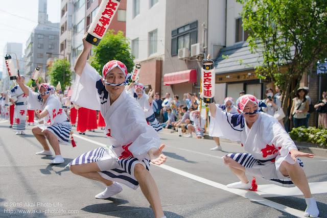 江戸っ子連、マロニエ祭りの福井町通りで男踊りの踊り手の一人を撮影した写真 その4