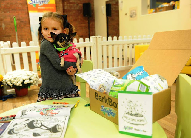 Swiffer and BarkBox partner to provide 10,000 Welcome Home Kits to shelters across the nation.