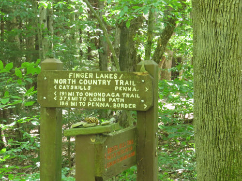Finger Lakes Trail sign
