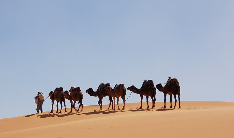 Planning Your Exotic Getaway with Free Online Resources