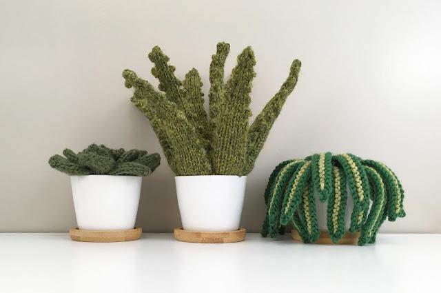 knit, houseplant, mini, green, aloe, succulent, spider, plant, pot, home decor
