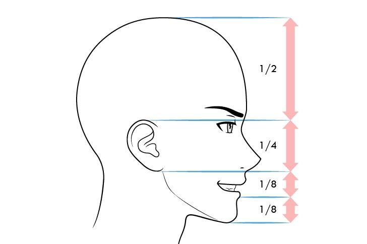 Anime laki-laki proporsi wajah tampilan samping ekspresi menyeringai