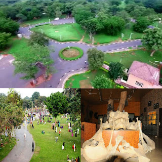 Photogenic And Historical Place To Visit for Tourists In Northern Nigeria (Arewa)