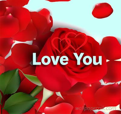 download rose wallpaper by wallpaperpik
