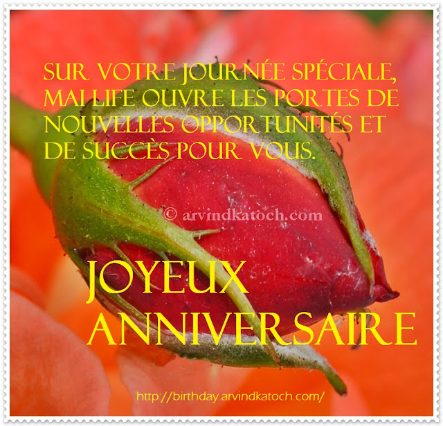 journée, spéciale, life, nouvelles, success, joyeux anniversaire, French, Birthday card
