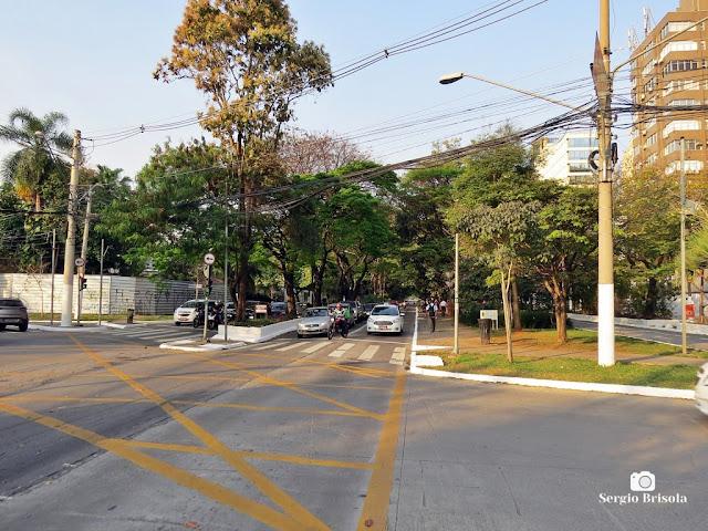 Vista de trecho da Avenida 9 de Julho no Jardim Europa - São Paulo