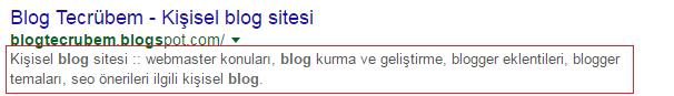 Google arama sonucu görünüm