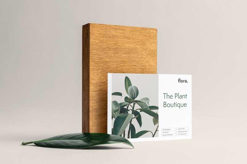Flora Branding Mockup 4117037