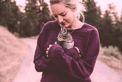 القطط حيوانات أليفة مخلصة ومحببة