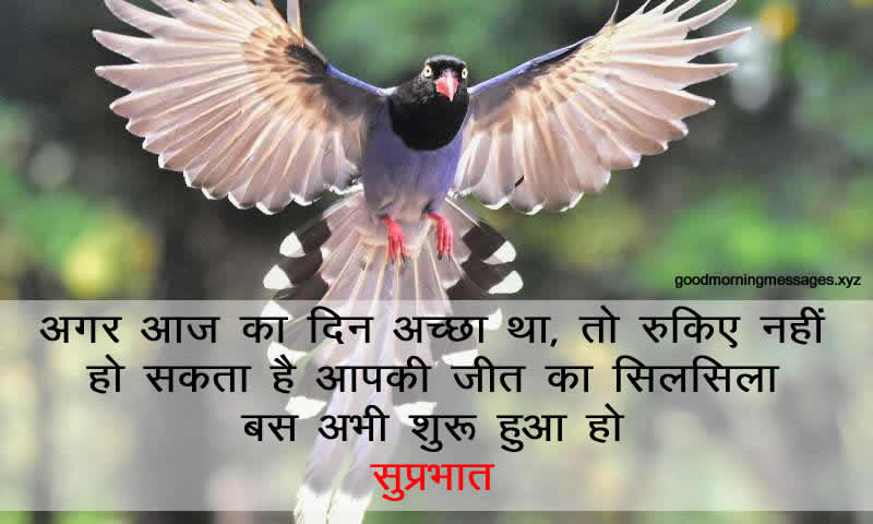Good morning images with love birds quotes Hindi