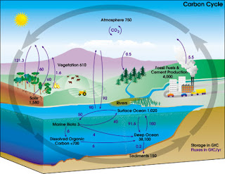 Dampak yang Disebabkan Oleh Siklus Hidrologi