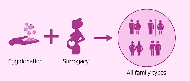how does the egg donation process work