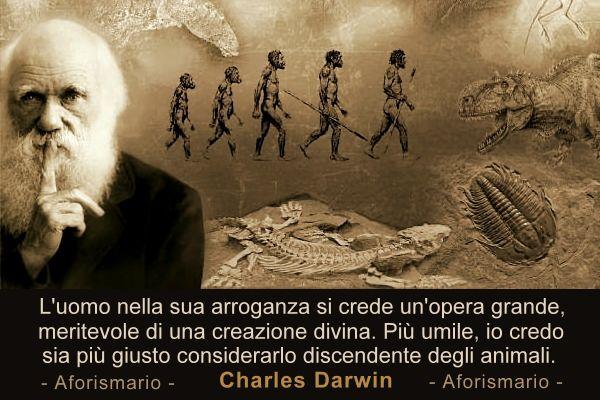 Mensa Darwins