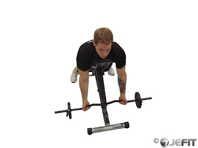 EZ-bar spider curl