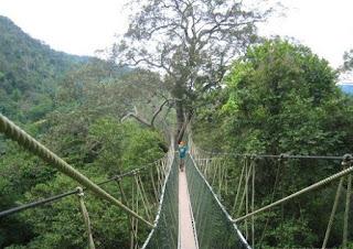 http://www.teluklove.com/2017/05/destinasti-objek-wisata-hutan-wanagama.html