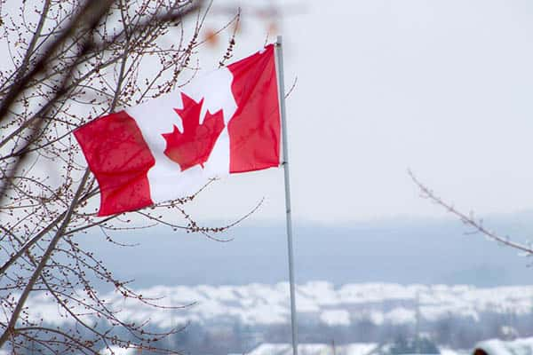Negocios Rentables En Canadá