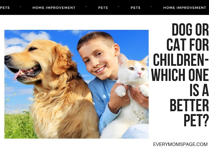 Dog Or Cat For Children- Which one is a better pet?