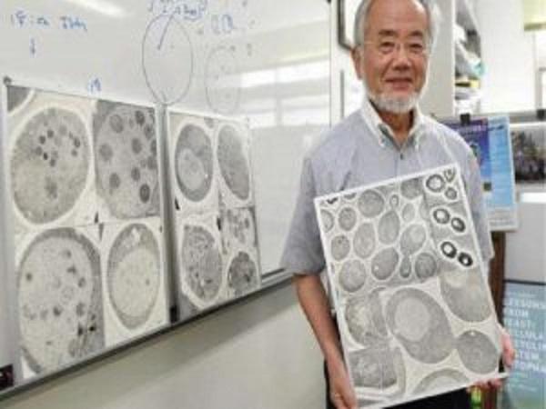 Peraih Nobel Kedokteran Asal Jepang Ini Buktikan Khasiat Puasa Bagi Kesehatan