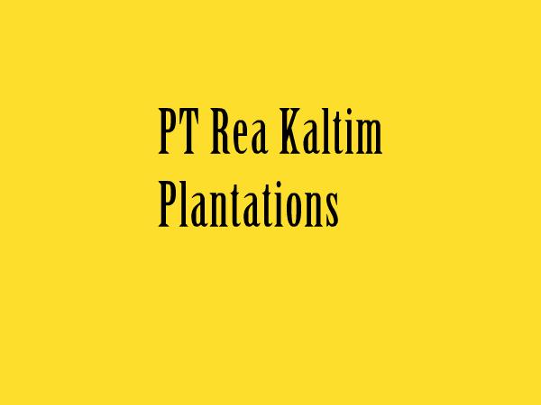 Lowongan Kerja PT Rea Kaltim Plantations