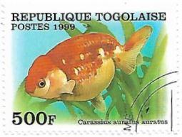 Selo Peixe-dourado