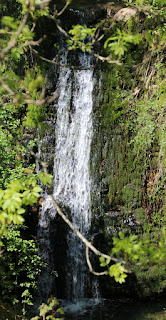 Waterfall at the picnic spot