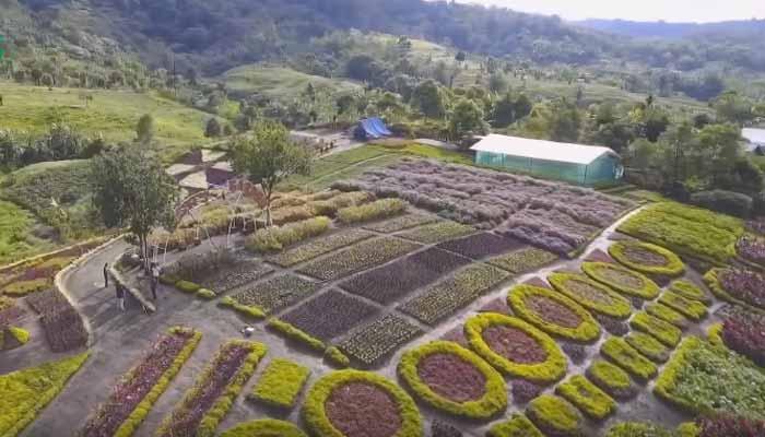 Tempat Wisata di Bangko