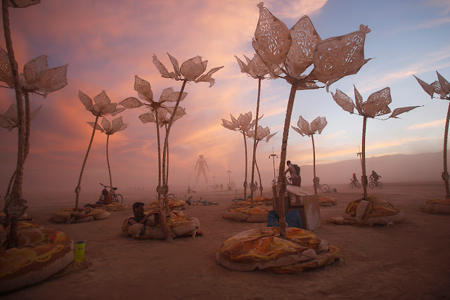burning-man-festival-flowers