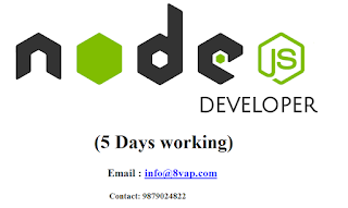 Node js developer (5 Days working)