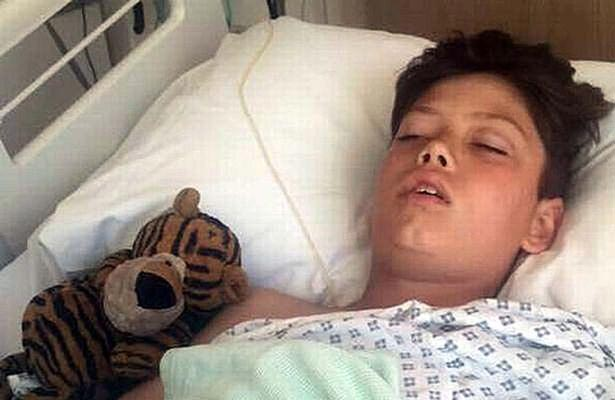 Boy nearly killed by falling tree during birthday party