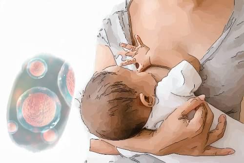 Anne Sütünden Bebeklerin Beyinlerine Kök Hücre Nakli - Mikrokimerizm