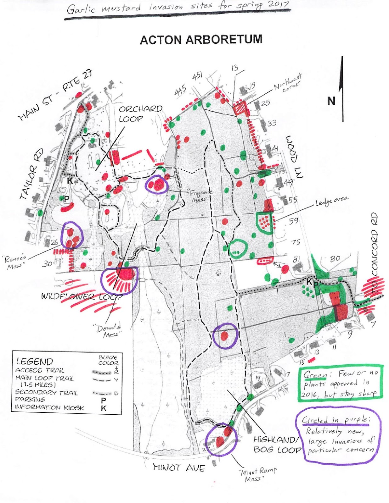 volunteer bruce carley came up with his usual excellent annual map of garlic mustard invasions at the arboretum and abutters