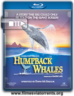 Humpback Whales Torrent - BluRay Rip 720p e 1080p Legendado (2015)