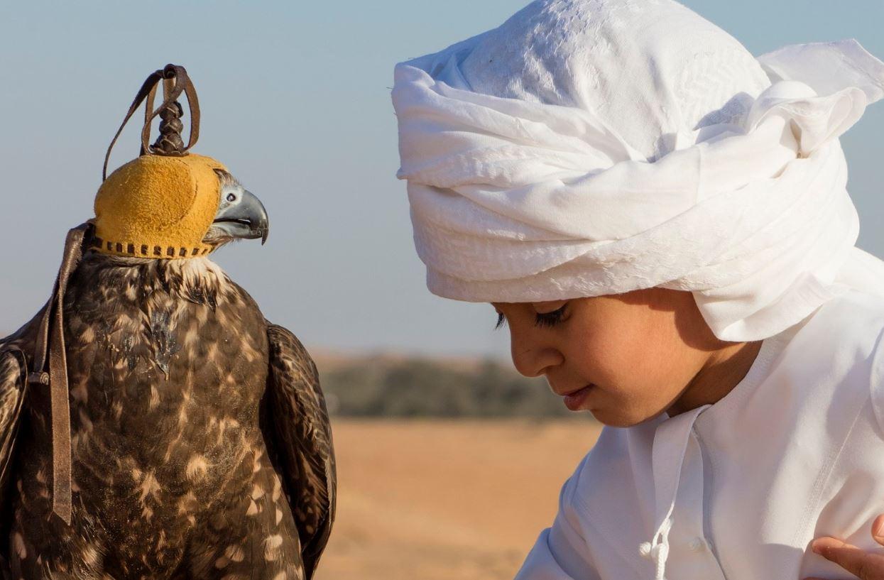 مدرسة محمد بن زايد للصقارة وجهة سياحية هامة