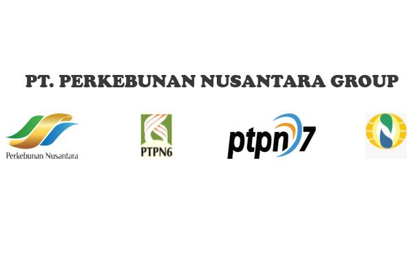 Lowongan Kerja PTPN Group