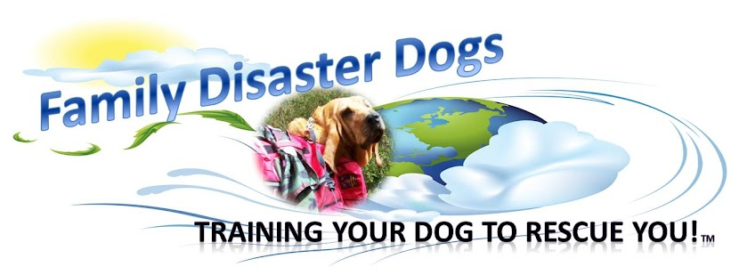 Family-Disaster-Dogs