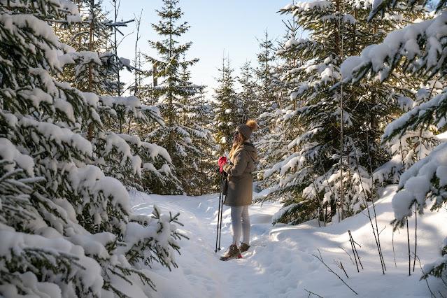 Winterwandern Mauth-Finsterau  Reschbachklause – Siebensteinkopf  Nationalpark Bayerischer Wald 05